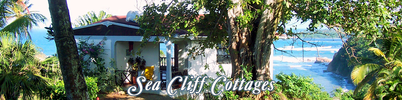 Sea Cliff Cottages